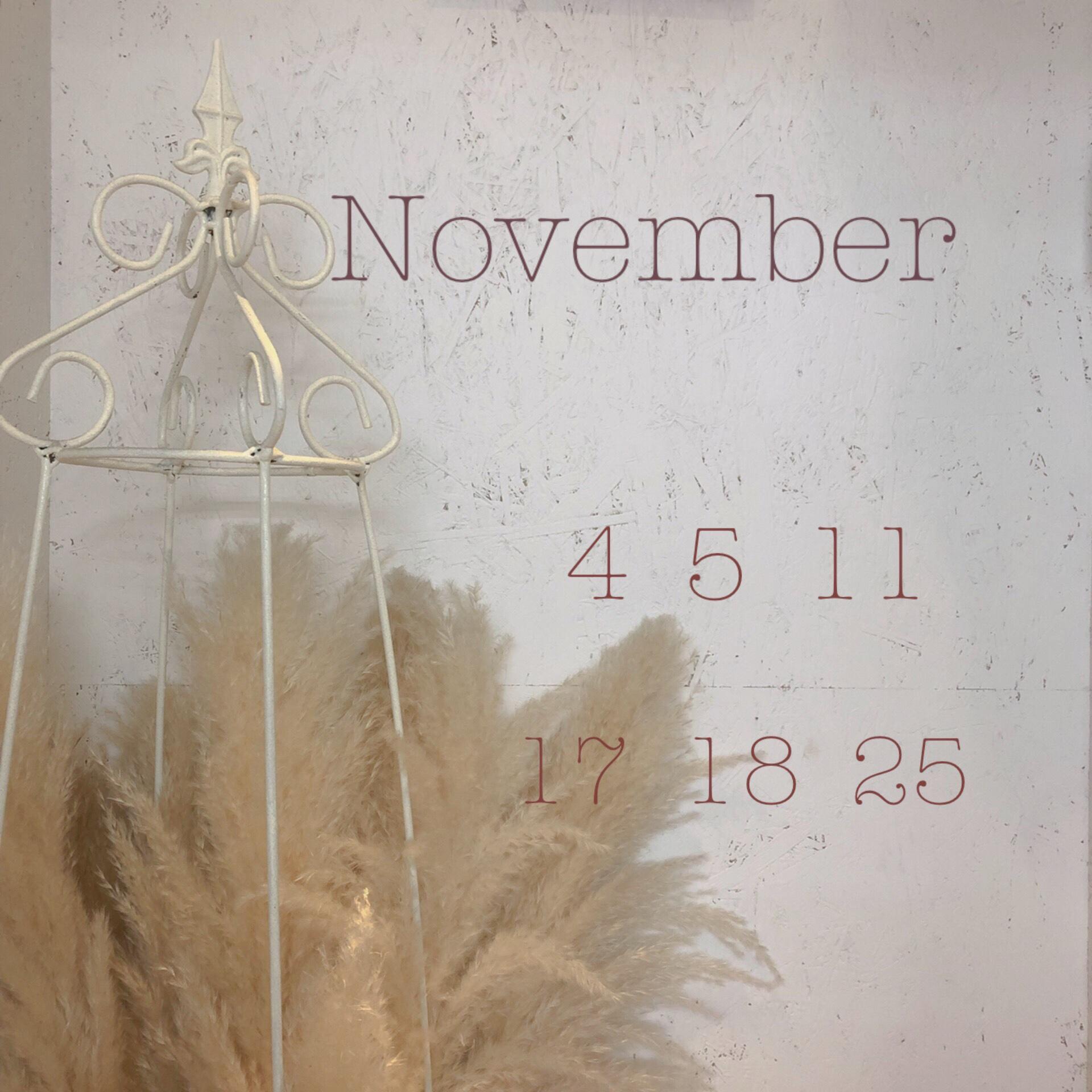 11月のお休み✂︎